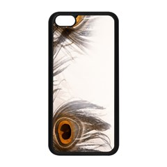 Peacock Feathery Background Apple iPhone 5C Seamless Case (Black)