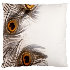 Peacock Feathery Background Large Flano Cushion Case (Two Sides)