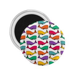 Small Rainbow Whales 2 25  Magnets