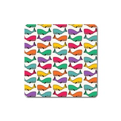 Small Rainbow Whales Square Magnet