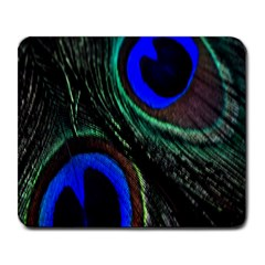 Peacock Feather Large Mousepads