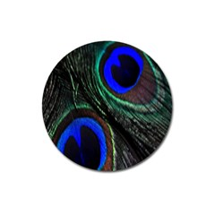 Peacock Feather Magnet 3  (round)