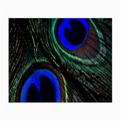 Peacock Feather Small Glasses Cloth (2-Side)