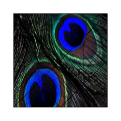 Peacock Feather Acrylic Tangram Puzzle (6  x 6 )