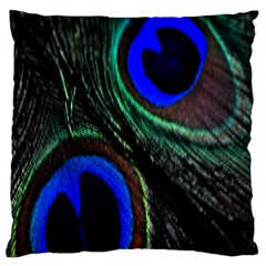 Peacock Feather Large Cushion Case (One Side)