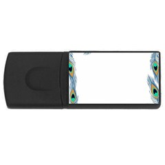 Beautiful Frame Made Up Of Blue Peacock Feathers USB Flash Drive Rectangular (2 GB)