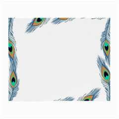 Beautiful Frame Made Up Of Blue Peacock Feathers Small Glasses Cloth