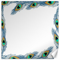 Beautiful Frame Made Up Of Blue Peacock Feathers Canvas 12  x 12