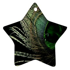 Feather Peacock Drops Green Ornament (Star)