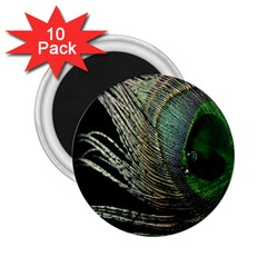 Feather Peacock Drops Green 2.25  Magnets (10 pack)