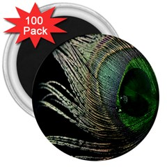Feather Peacock Drops Green 3  Magnets (100 pack)