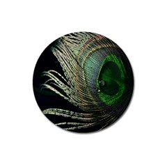 Feather Peacock Drops Green Magnet 3  (Round)