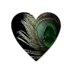 Feather Peacock Drops Green Heart Magnet
