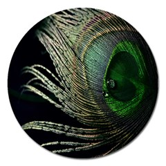 Feather Peacock Drops Green Magnet 5  (round)