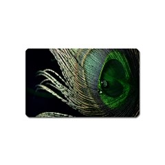 Feather Peacock Drops Green Magnet (Name Card)