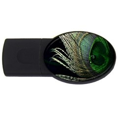Feather Peacock Drops Green USB Flash Drive Oval (2 GB)