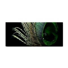 Feather Peacock Drops Green Cosmetic Storage Cases