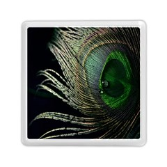 Feather Peacock Drops Green Memory Card Reader (square)