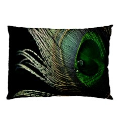 Feather Peacock Drops Green Pillow Case (two Sides)