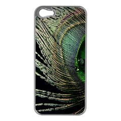 Feather Peacock Drops Green Apple iPhone 5 Case (Silver)