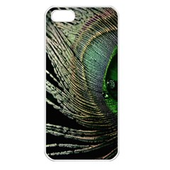 Feather Peacock Drops Green Apple iPhone 5 Seamless Case (White)