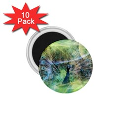 Digitally Painted Abstract Style Watercolour Painting Of A Peacock 1 75  Magnets (10 Pack)