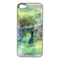 Digitally Painted Abstract Style Watercolour Painting Of A Peacock Apple iPhone 5 Case (Silver)