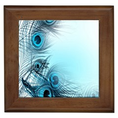 Feathery Background Framed Tiles