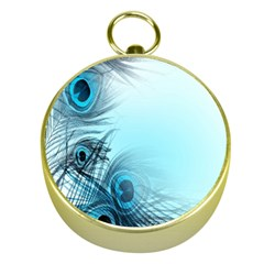 Feathery Background Gold Compasses