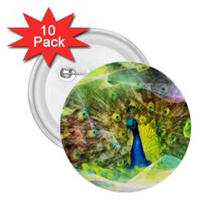 Peacock Digital Painting 2 25  Buttons (10 Pack)