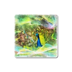 Peacock Digital Painting Square Magnet