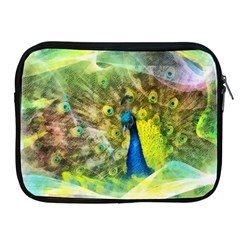 Peacock Digital Painting Apple iPad 2/3/4 Zipper Cases