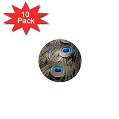 Colorful Peacock Feathers Background 1  Mini Magnet (10 Pack)