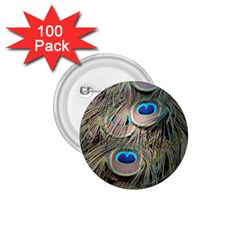 Colorful Peacock Feathers Background 1 75  Buttons (100 Pack)