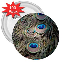 Colorful Peacock Feathers Background 3  Buttons (100 pack)