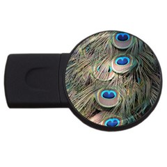 Colorful Peacock Feathers Background USB Flash Drive Round (1 GB)