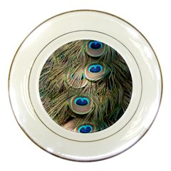 Colorful Peacock Feathers Background Porcelain Plates