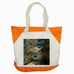 Colorful Peacock Feathers Background Accent Tote Bag