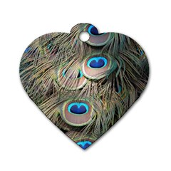 Colorful Peacock Feathers Background Dog Tag Heart (Two Sides)