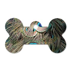 Colorful Peacock Feathers Background Dog Tag Bone (two Sides)