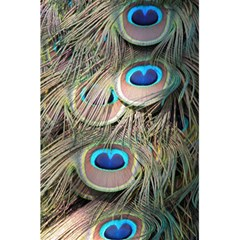 Colorful Peacock Feathers Background 5.5  x 8.5  Notebooks