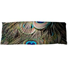 Colorful Peacock Feathers Background Body Pillow Case Dakimakura (two Sides)