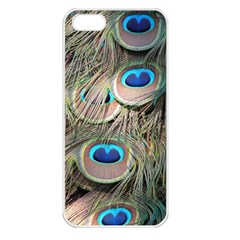 Colorful Peacock Feathers Background Apple iPhone 5 Seamless Case (White)