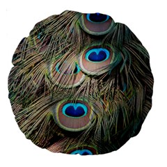 Colorful Peacock Feathers Background Large 18  Premium Round Cushions