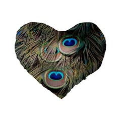 Colorful Peacock Feathers Background Standard 16  Premium Heart Shape Cushions