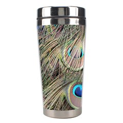 Colorful Peacock Feathers Background Stainless Steel Travel Tumblers