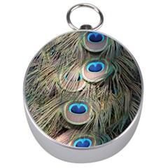 Colorful Peacock Feathers Background Silver Compasses