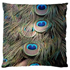 Colorful Peacock Feathers Background Large Flano Cushion Case (Two Sides)