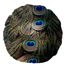 Colorful Peacock Feathers Background Large 18  Premium Flano Round Cushions