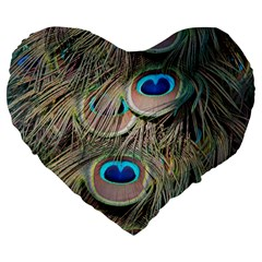 Colorful Peacock Feathers Background Large 19  Premium Flano Heart Shape Cushions